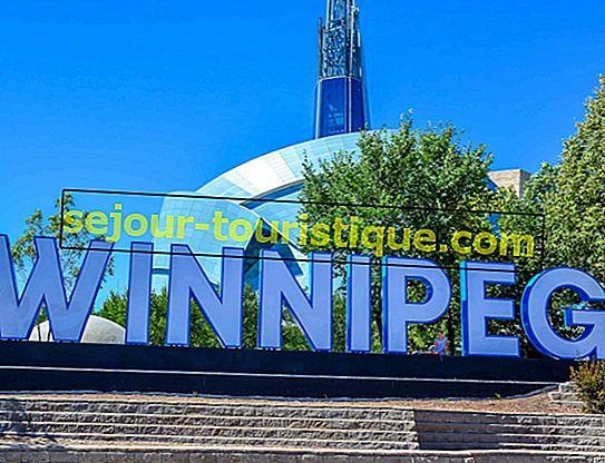 10 nhà hàng hàng đầu ở Winnipeg, Canada