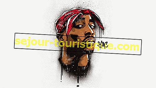 10 Rapper Area Teluk Paling Berpengaruh