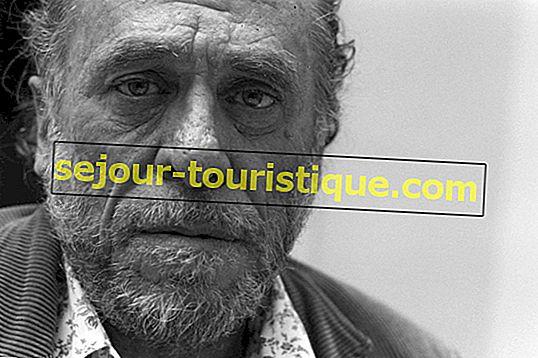 Giới thiệu về Charles Bukowski trong 8 bài thơ