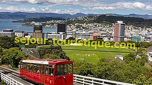 20 Objek Wisata yang Wajib Dikunjungi di Wellington, Selandia Baru
