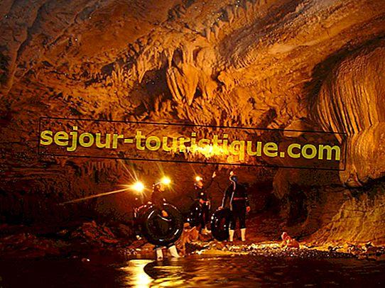 Dies sind die spektakulärsten Glühwürmchenhöhlen der Welt