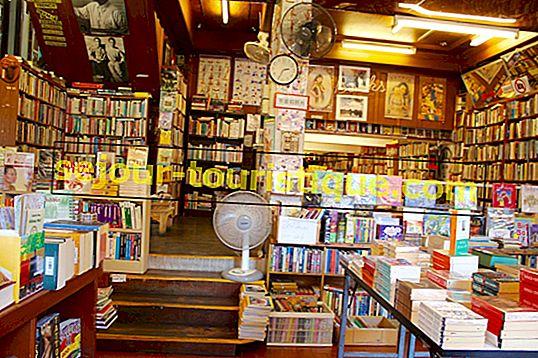 8 Toko Buku Terbaik di Auckland, Selandia Baru