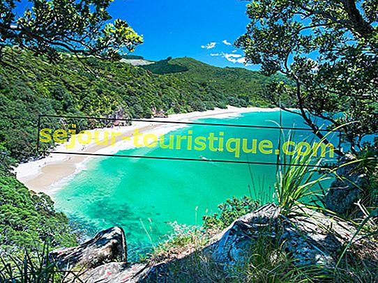 15 Pantai Terbaik di Selandia Baru