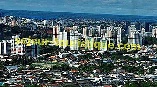 Le Top 10 Des Choses À Faire Et À Voir À Manaus, Brésil